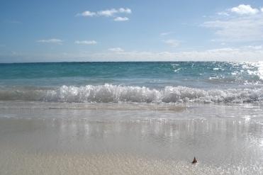 Punta Cana 2011 634