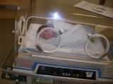 Adriana 04 01 2010 039