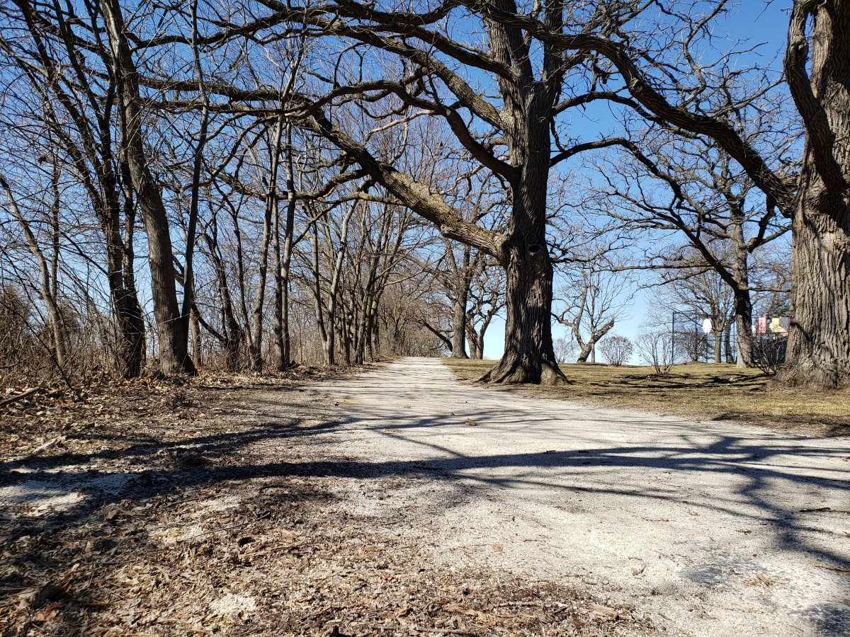 Take a walk in the park day - March 30th